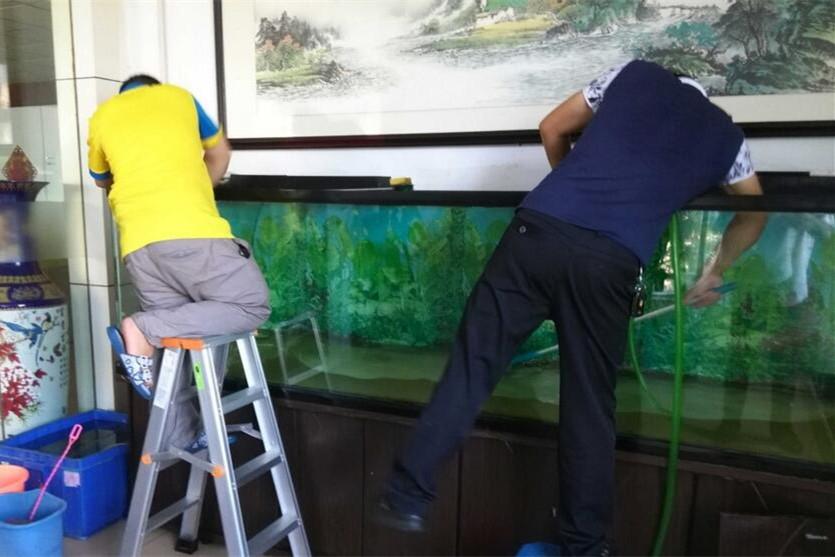 北流鱼缸上门清洗维护服务 北流水族服务(上门)